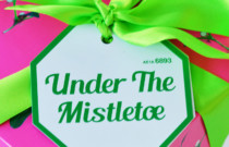 Under the Mistletoe with LUSH Cosmetics
